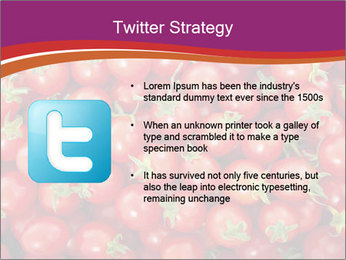 0000074311 PowerPoint Template - Slide 9