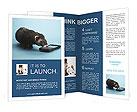 0000074312 Brochure Templates