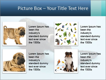 0000074312 PowerPoint Templates - Slide 14