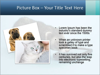 0000074312 PowerPoint Templates - Slide 20