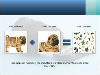 0000074312 PowerPoint Templates - Slide 22