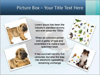 0000074312 PowerPoint Templates - Slide 24