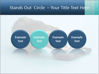 0000074312 PowerPoint Templates - Slide 76