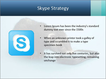 0000074312 PowerPoint Templates - Slide 8