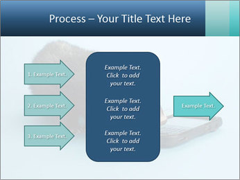 0000074312 PowerPoint Templates - Slide 85