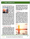 0000074313 Word Template - Page 3