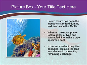 0000074316 PowerPoint Template - Slide 13