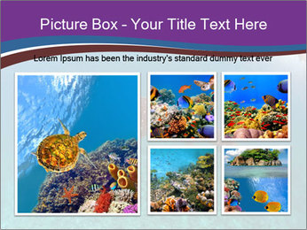 0000074316 PowerPoint Template - Slide 19