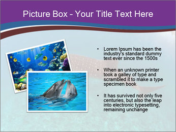 0000074316 PowerPoint Template - Slide 20