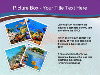 0000074316 PowerPoint Template - Slide 23