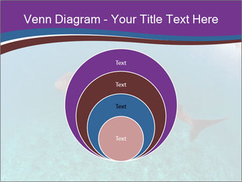 0000074316 PowerPoint Template - Slide 34