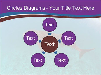 0000074316 PowerPoint Template - Slide 78