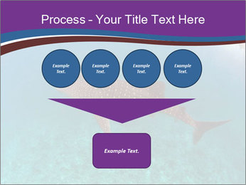0000074316 PowerPoint Template - Slide 93
