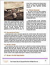 0000074317 Word Template - Page 4