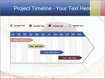 0000074321 PowerPoint Template - Slide 25