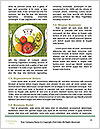0000074322 Word Template - Page 4