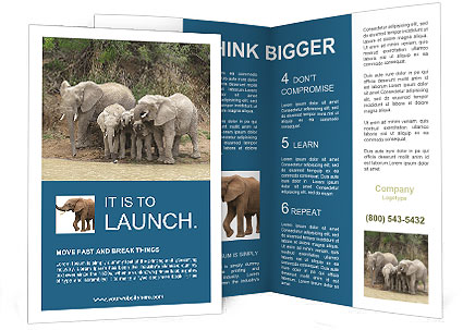 0000074325 Brochure Template