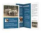 0000074325 Brochure Templates