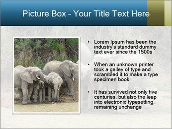 0000074325 PowerPoint Template - Slide 13