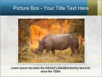 0000074325 PowerPoint Template - Slide 15