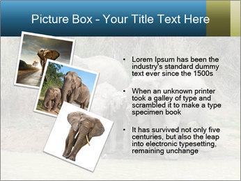 0000074325 PowerPoint Template - Slide 17