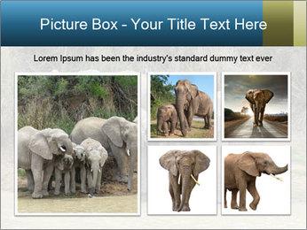 0000074325 PowerPoint Template - Slide 19