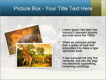 0000074325 PowerPoint Template - Slide 20