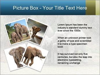 0000074325 PowerPoint Template - Slide 23