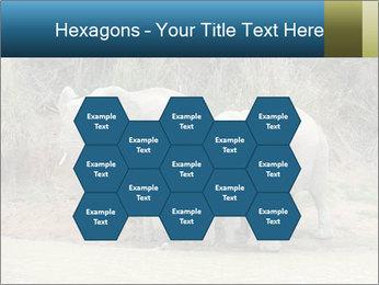 0000074325 PowerPoint Template - Slide 44