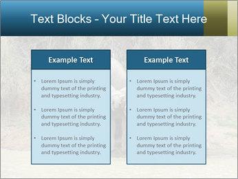 0000074325 PowerPoint Template - Slide 57
