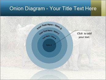 0000074325 PowerPoint Template - Slide 61