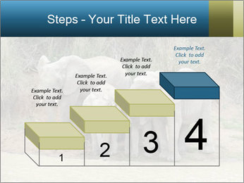 0000074325 PowerPoint Template - Slide 64