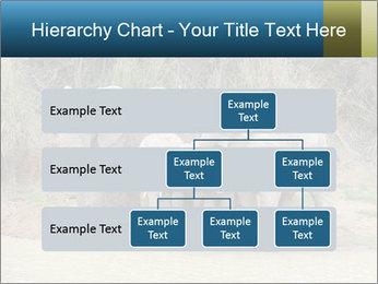 0000074325 PowerPoint Template - Slide 67