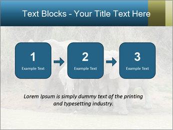 0000074325 PowerPoint Template - Slide 71