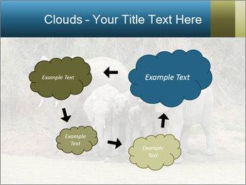 0000074325 PowerPoint Template - Slide 72