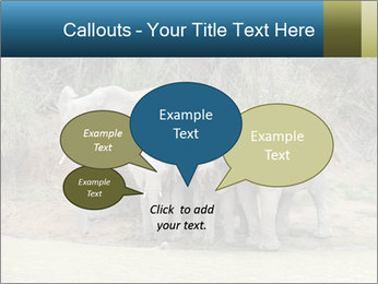 0000074325 PowerPoint Template - Slide 73