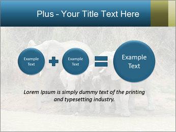 0000074325 PowerPoint Template - Slide 75