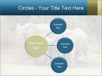0000074325 PowerPoint Template - Slide 79