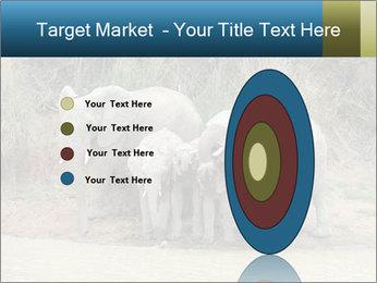 0000074325 PowerPoint Template - Slide 84