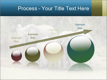0000074325 PowerPoint Template - Slide 87