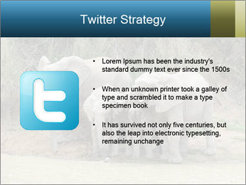 0000074325 PowerPoint Template - Slide 9