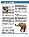 0000074325 Word Template - Page 3