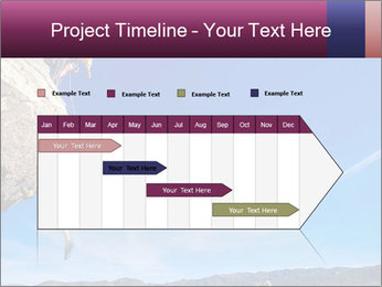 0000074333 PowerPoint Templates - Slide 25