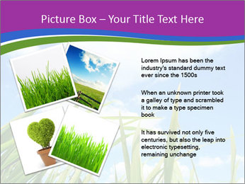 0000074334 PowerPoint Template - Slide 23