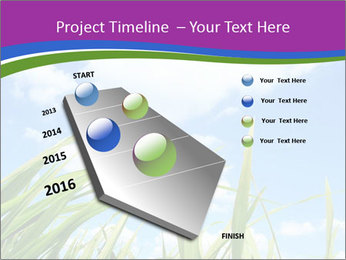 0000074334 PowerPoint Template - Slide 26