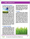 0000074334 Word Template - Page 3