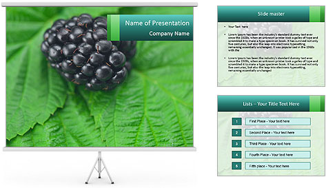 0000074344 PowerPoint Template
