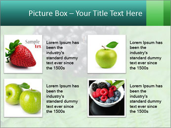 0000074344 PowerPoint Template - Slide 14