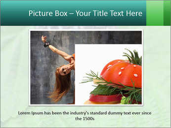0000074344 PowerPoint Template - Slide 16