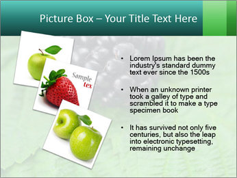 0000074344 PowerPoint Template - Slide 17